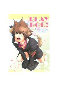 PLAY DOG!