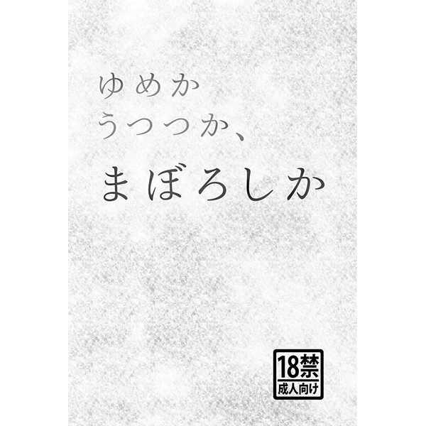 小説 夢 ランキング basara 戦国