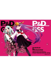P&D GSS