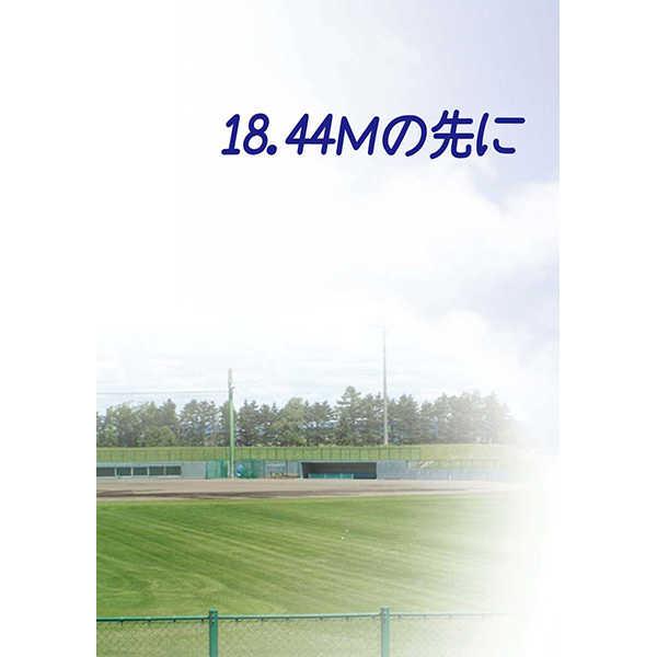 18.44Mの先に [Biz(浅木さくら)] ダイヤのA