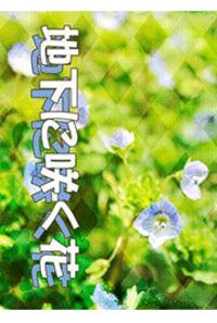 地下に咲く花