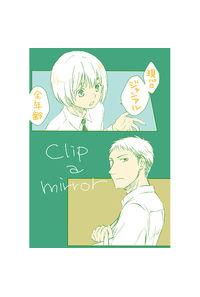 clip a mirror