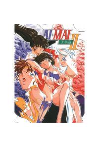 AI&MAI II