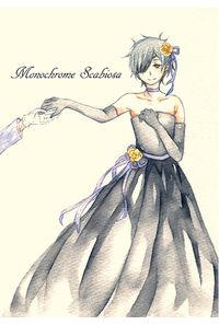 Monochrome Scabiosa