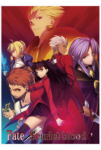 Fate/Scarlet blood 1【新装版】