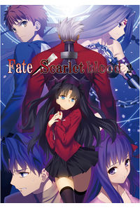 Fate/Scarlet blood 2【新装版】
