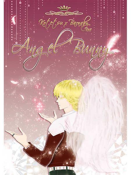 Angel Bunny [緋桜流(城みづき)] TIGER & BUNNY