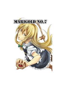 MARIGOLD No.7