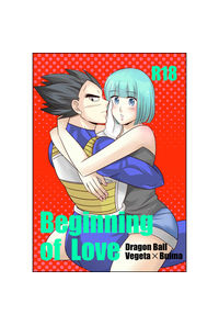 Biginning of Love