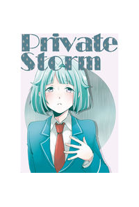 Private Storm