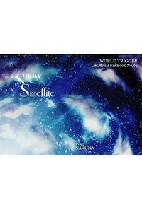 Snow Satellite