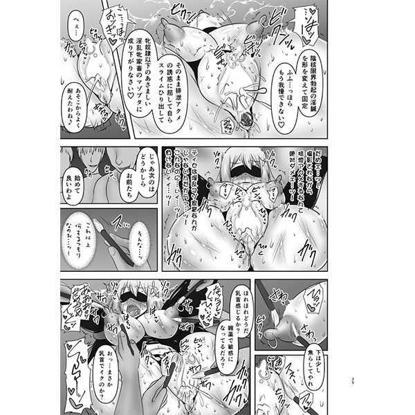 煌盾戦姫エルセイン 恥虐の隷獄島 後編