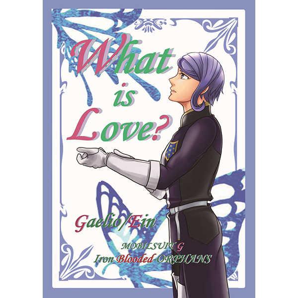 What is Love? [vitamin(さらら)] 機動戦士ガンダム 鉄血のオルフェンズ