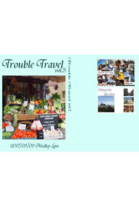 Trouble Travel 3