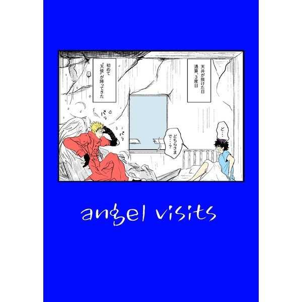 angel visits