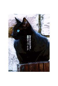 黒猫のオーバーチェア