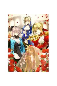【nokcy】Fate/Grand Order セイバーコレクション B2タペストリー