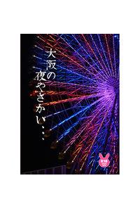 大阪の夜やさかい、、、