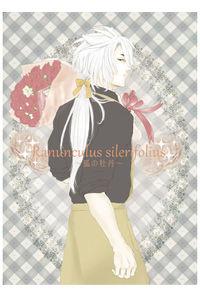 Ranunculus silerifolius~狐の牡丹~