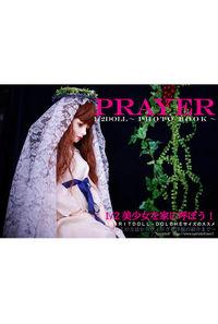 PRAYER-1/2 doll photo book