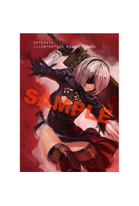AUTOMATA summary book