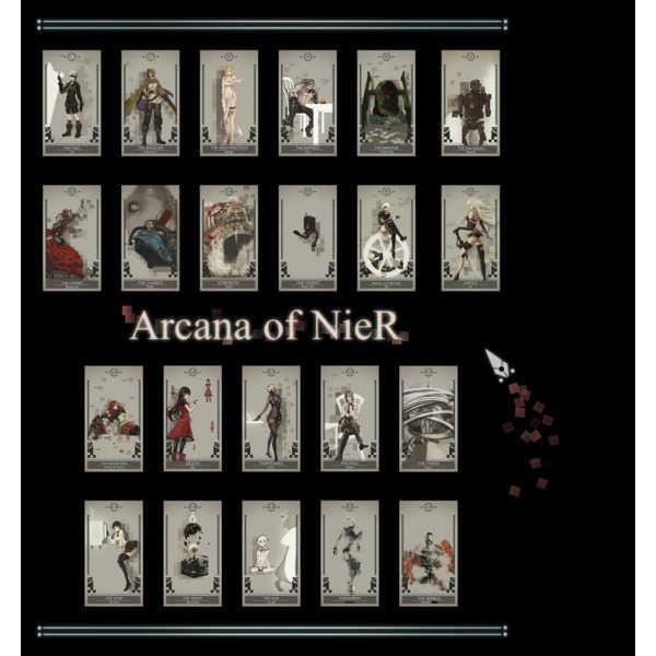 Arcana of NieR [R-108(煩悩虫)] NieR:Automata