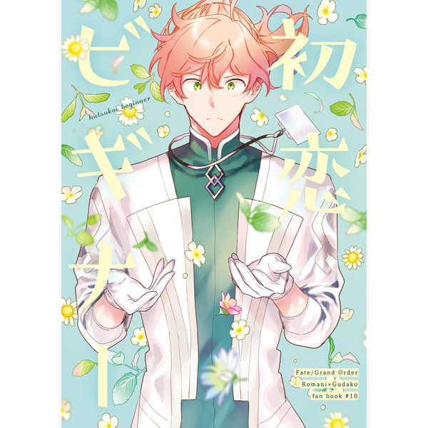 初恋ビギナー [クロコダイルティアーズ(わに)] Fate/Grand Order