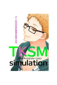 TKSMシミュレーション
