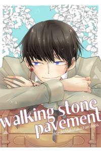 walking stone pavement