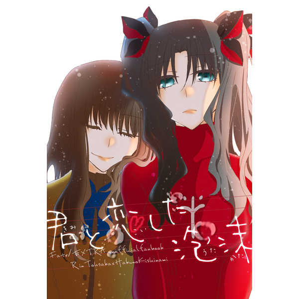君と恋した泡沫 [箱庭(奏詩)] Fate