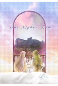 One Nights Trip