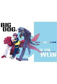 BIG DOG?