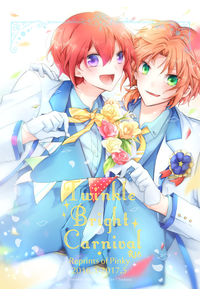 Twinkle Bright Carnival