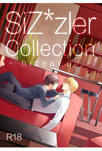 SiZ*zler Collection hideaway