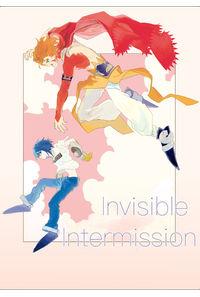 Invisible Intermission