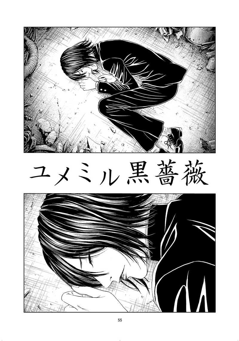 ライチ★設定資料集