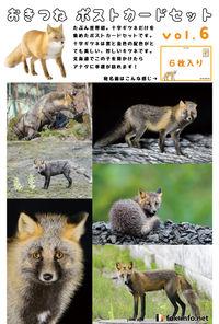 おきつね ポストカード Vol.6 十字ギツネ