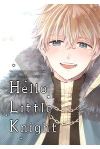 hello little knight