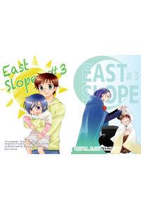 EastSlope#3