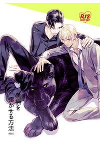 黒猫を懐かせる方法