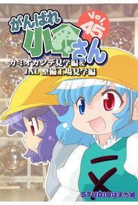 がんばれ小傘さん Vol.45