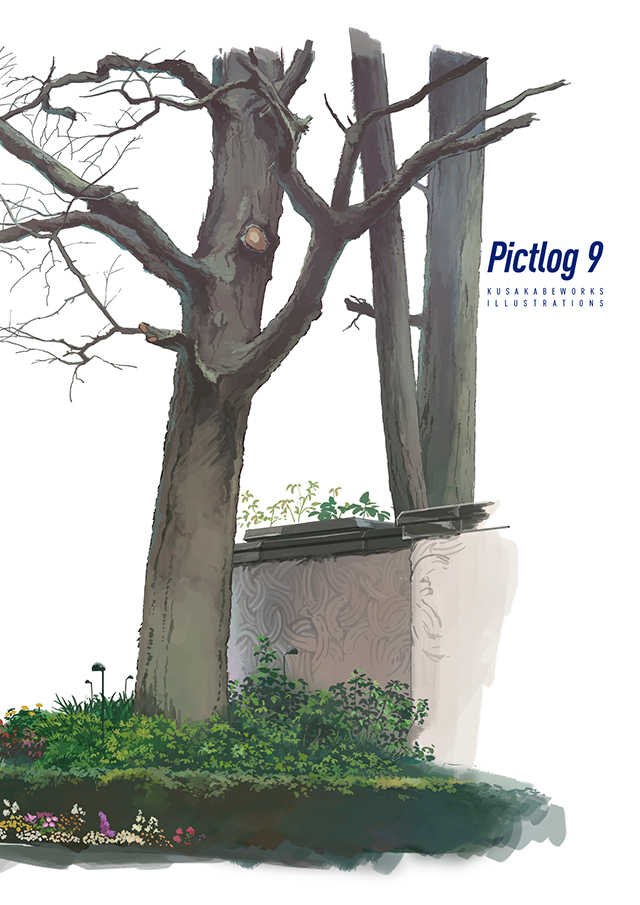 Pictlog 9