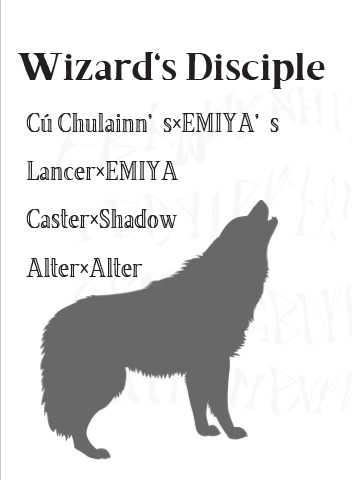 Wizard's Disciple