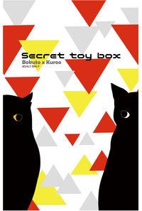 Secret toy box