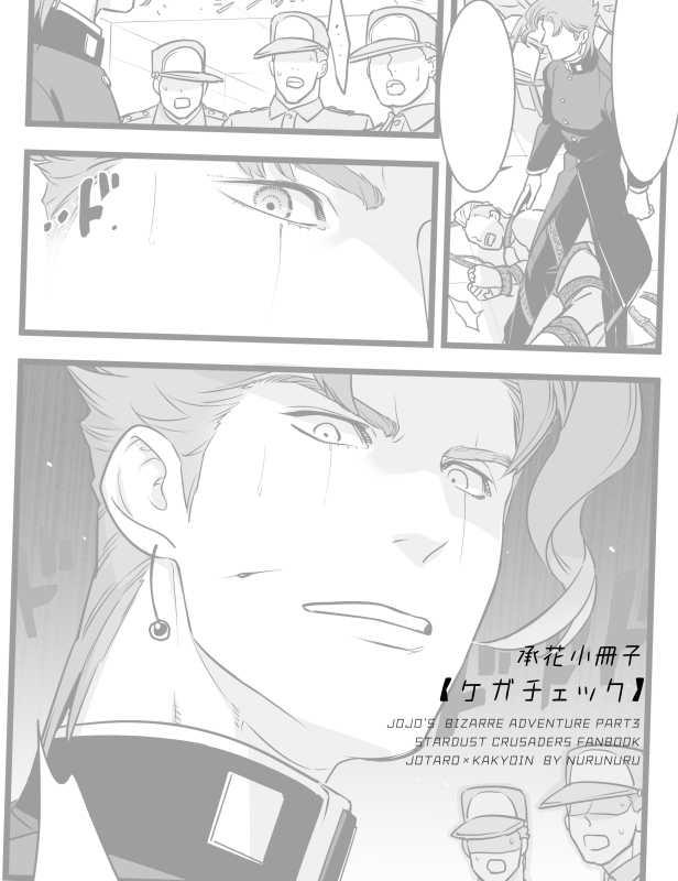 承花小冊子【ケガチェック】
