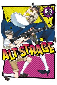 ALT STRAGE
