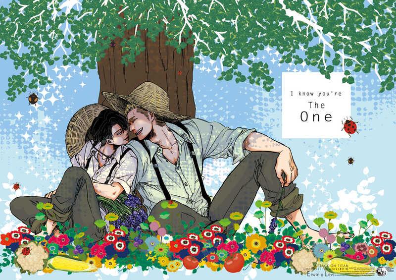 I know you're The One [ユウカイ★超特急(蚕乃霞)] 進撃の巨人