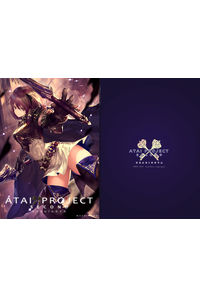 ATAI PROJECT second