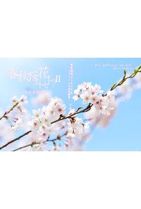 春秋桜花エトセトラ2
