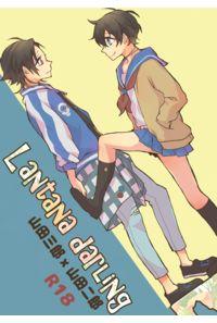 Lantana darling